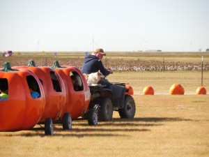 Pumpkin Trains