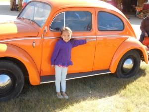 Pumpkin Beatle